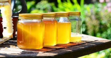 Користь меду для здоров'я людини