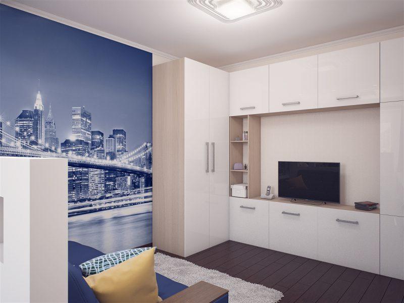 Вітальня і спальня в одній кімнаті - фото 2