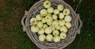 Варення з яблук рецепт - 7