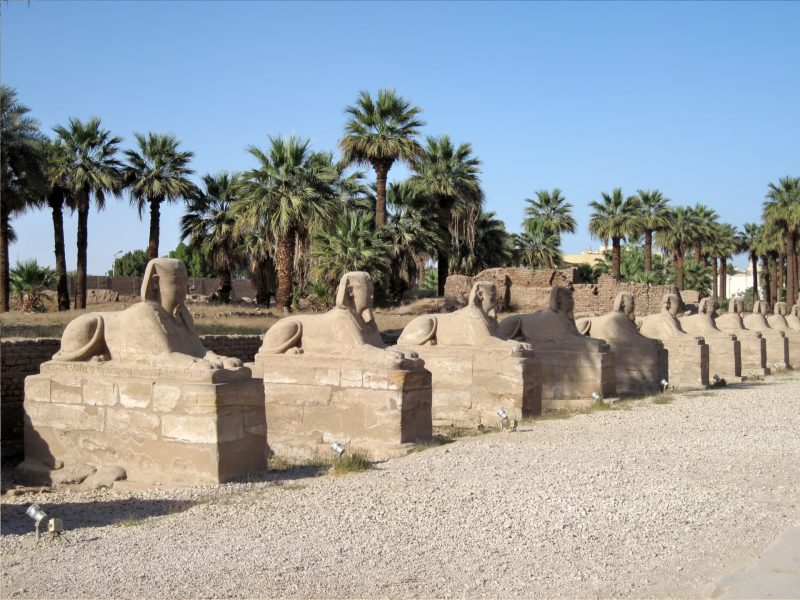 Велика Алея сфінксів біля Луксорського храму.