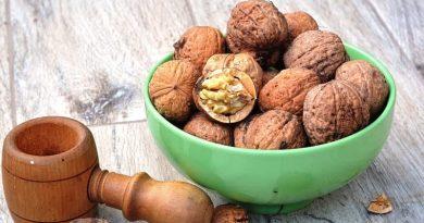 Волоський горіх: користь і шкода для організму людини