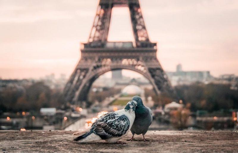 Париж, любов моя